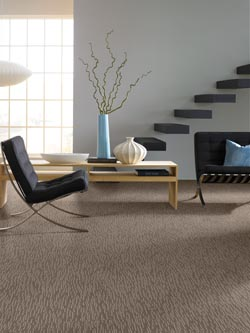 Get the perfect carpet to replace your old carpeting when you visit our flooring store to peruse the many styles of carpeting for the rooms in your home.